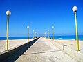 Marina sea bridge.jpg