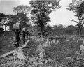 Marsch genom tonskog. Makubrva. Kongo-Kinshasa - SMVK - 0713.0092.tif