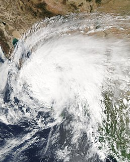 Hurricane Marty (2003) Category 2 Pacific hurricane in 2003