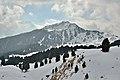 Mastle y Pic dinviern Gherdëina.jpg
