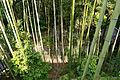 Matsuo-dera Yamatokoriyama Nara pref Japan18s3.jpg