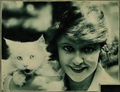 May Allison 2 Motion Picture Classic 1920.png