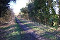 Meon Valley Trail - geograph.org.uk - 355793.jpg