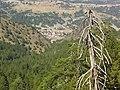 Mesolouri 510 32, Greece - panoramio.jpg