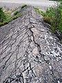 Metagraywackes (Chelmsford Formation, Paleoproterozoic, 1.74 Ga; Larchwood North outcrop, Sudbury Impact Structure, Ontario, Canada) 10 (47761075571).jpg