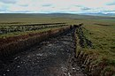 Mid Hill, peat banks showing peats drying. Hoy Hills in far distance. - geograph.org.uk - 230826.jpg