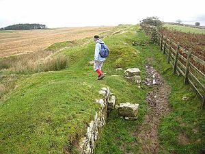 Milecastle 33 - Image: Milecastle 33 on Hadrian's Wall geograph.org.uk 1020188