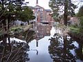 Mill Pond at the Coldharbor mill.jpg