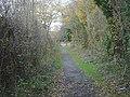Moor Lane, Balloon Woods - geograph.org.uk - 622479.jpg