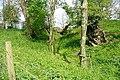 Motte at Woodgarston Farm, Upper Wootton, Hampshire.jpg