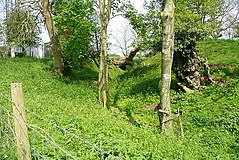 Motte at Woodgarston Farm, Upper Wootton, Hampshire.jpg
