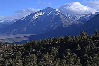Mount Tom (California) - Mount Tom from the northeast