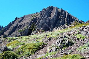 Mount Angeles - Mount Angeles summit. Notice the steeply tilted layers of ocean floor sediments.