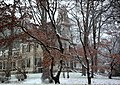 Mount Kisco Victorian Mansion in Snow.jpg
