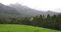 Munnar - views from Munnar (36).jpg