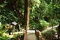 Murouji, shida-1.jpg