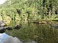Myojin Pond Nino-ike 01.JPG