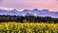 Nationalpark Berchtesgaden I.jpg