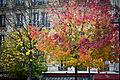 Neuilly-sur-Seine (6552237403).jpg