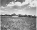 Newberry County, South Carolina. Land Cultivation. (No detailed description given.) - NARA - 522704.tif