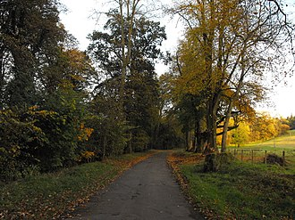 Newmilns - Walking is a popular Newmilns pastime. The Broons Road (seen here in autumn) is a popular destination throughout the year.