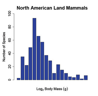 Body size and species richness