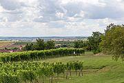 Oberretzbach und Retz vom hl. Stein 1329.jpg