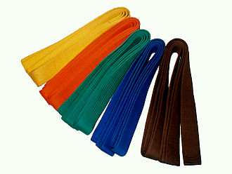 Obi (martial arts) - Obis for budō. The colours range from yellow to brown corresponding to judo kyū levels from 9th to 1st.