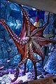 Octopus Spread (17381865448).jpg