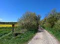 Oderberg-Neuendorf Weg zum Breitefenn.jpg