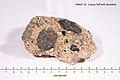 Oligocene Tuff containing Xenoliths - from New Zealand - Smithsonian Rock Sample 109647-23.jpg