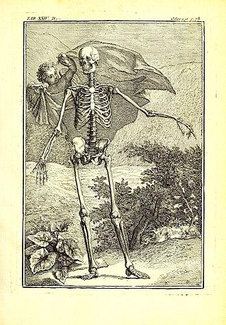 Pierre Tarin - Ostéo-graphie, by Pierre Tarin.