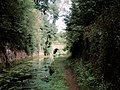 Oxenhall Tunnel - geograph.org.uk - 3682.jpg