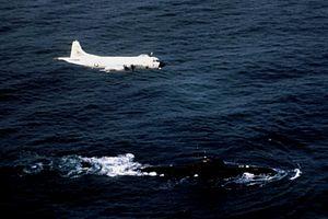 P-3B VP-1 over Soviet Victor class sub 1987.JPG