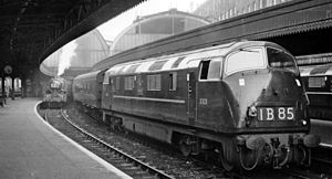 British Rail Class 42 - D829 'Magpie' waits at Paddington in 1961