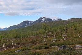 Padjelantaleden in Stora Sjöfallet (DSCF1038).jpg
