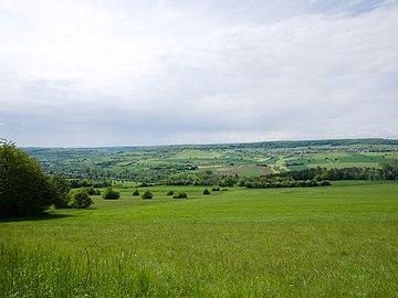 Panorama Bliestal bei Bliesdalheim 3.jpg
