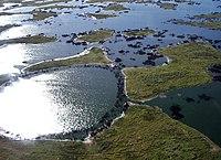 Pantanal, south-central South America 5170.jpg