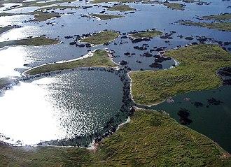 Pantanal - Typical Pantanal scenery