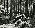 Paolo Monti - Servizio fotografico - BEIC 6340982.jpg