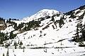 Paradise snow field (35727207345).jpg