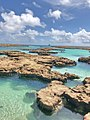 Paraiso atol das rocas.jpg