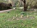 Parc Coteaux Avron Neuilly Plaisance 38.jpg