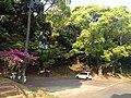 Parking area near Upper Shrine (Enagaura Shrine) of Umi Hachiman Shrine.JPG