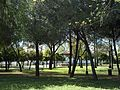 Parque de la Huerta.jpg