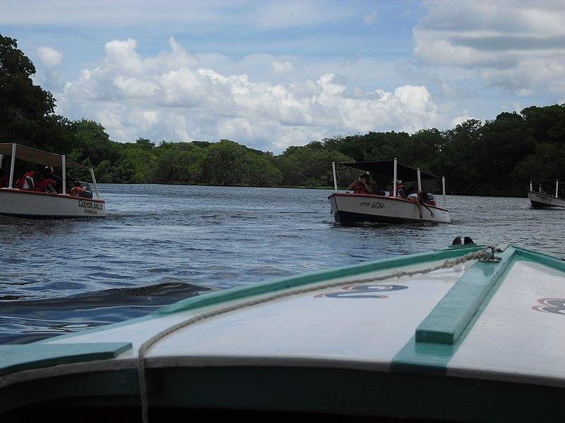 File:Paseo por la laguna la restinga.jpg