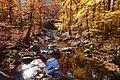 Passaic River, New Jersey Brigade Area, Bernardsville, NJ.jpg
