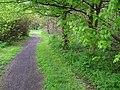 Path along the Camowen - geograph.org.uk - 1270996.jpg