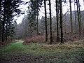 Paths converge, Woodcockair - geograph.org.uk - 298795.jpg