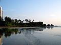 Payyaambalam beach.JPG